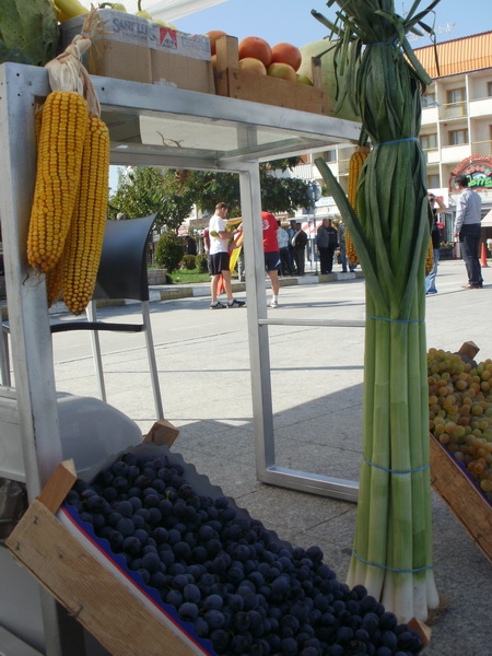 Horizonti at the Žetva (Harvest) Festival in Gostivar  Microcredit Foundation Horizonti